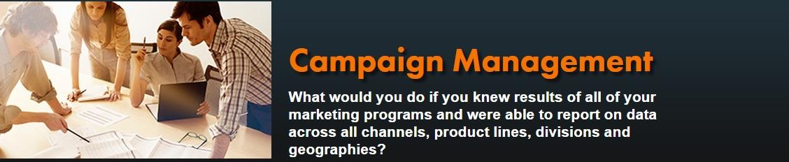 Real time campaign management